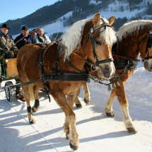 pferdeschlittenfahren_copyright_raffalt