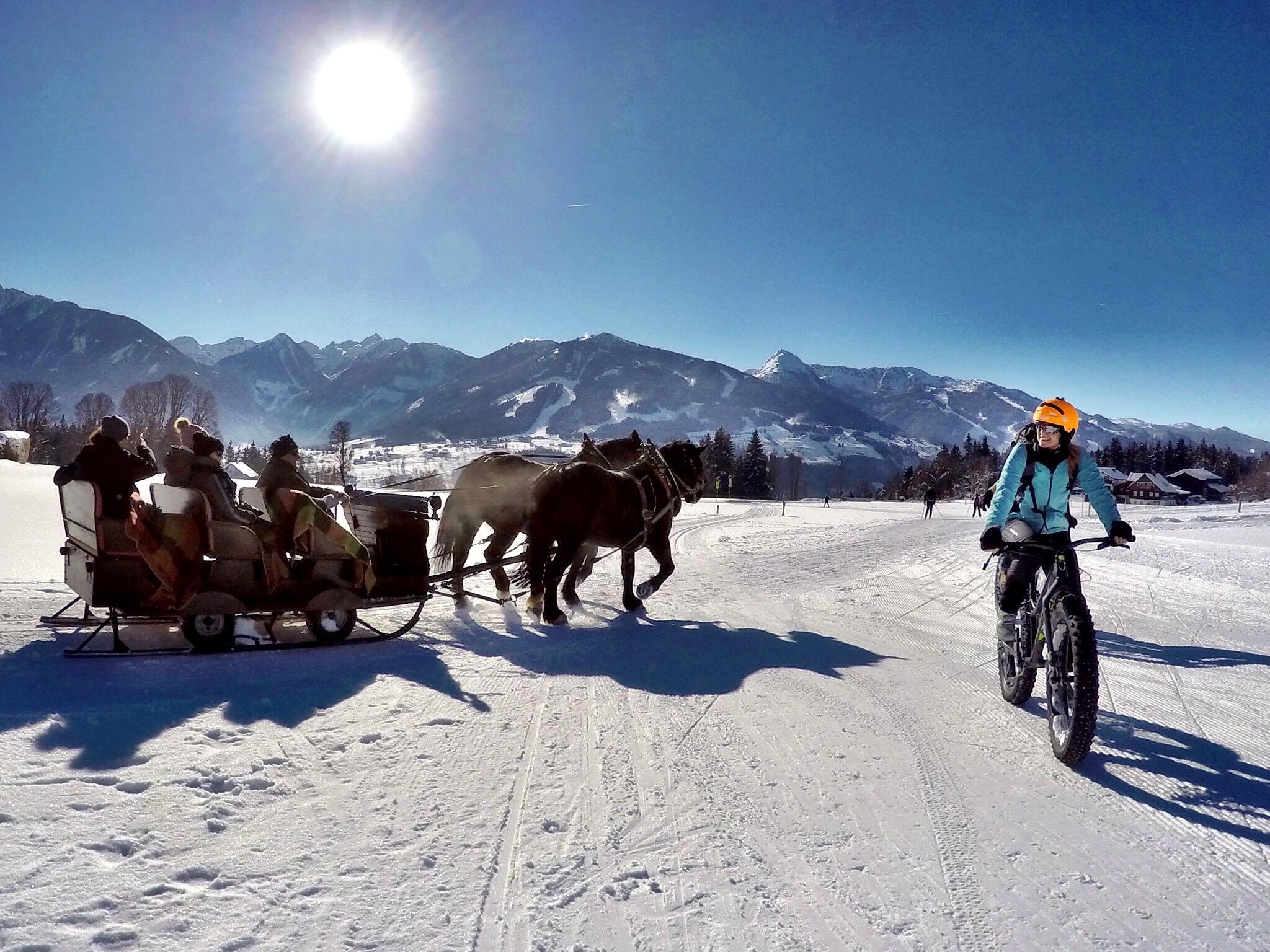 Schlittenfahrt in der herrlichen Winterlandschaft